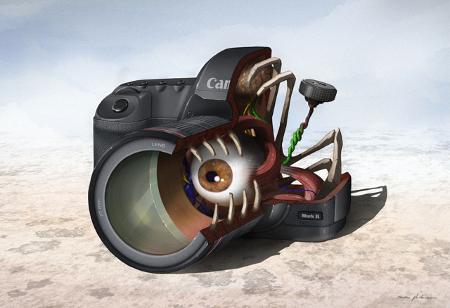 Das Innenleben der Canon 5D