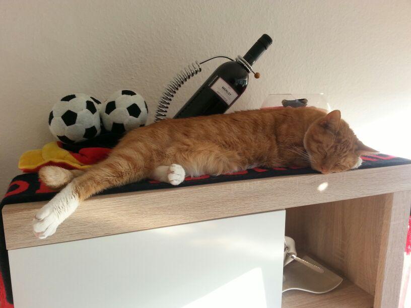 Katz-Schlaand