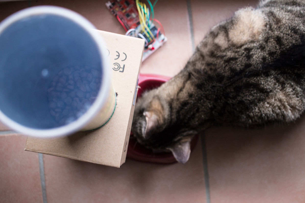 Mein Wochenendprojekt: Arduino Katzenfutterautomat